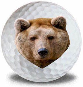 Wild Animal Bear Golf Balls 12pk