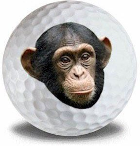 Wild Animal Chimp Golf Balls 12pk