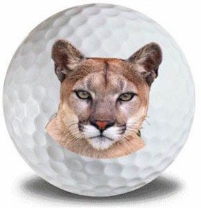 Wild Animal Cougar Golf Balls 12pk