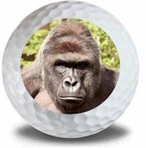 Wild Animal Gorilla Golf Balls 12pk