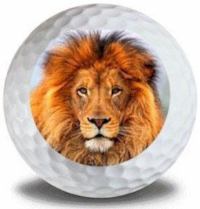 Wild Animal Lion Golf Balls 12pk