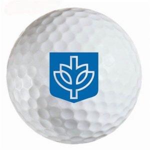 DePaul Deamons Refinished Titleist ProV1 Golf Balls