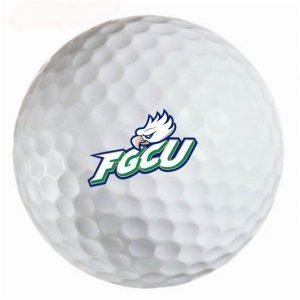FGCU Eagles Refinished Titleist ProV1 Golf Balls