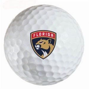 Florida Panthers Refinished Titleist ProV1 Golf Balls